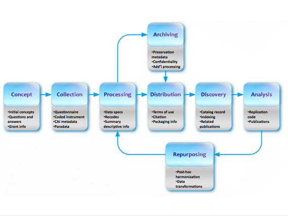 DDI Lifecycle Model